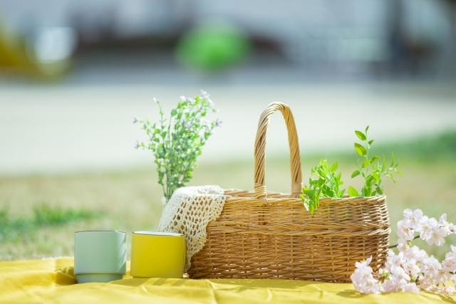 その5 台湾の2月は気候がよく、花粉が少ないため過ごしやすい